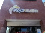Lighted Channel Letter Royal Aquatics Sign with Vinyl Overlay in Flower Mound, TX by Signs Manufacturing, Dallas, TX